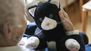JustoCat can help decrease loneliness and promote interaction