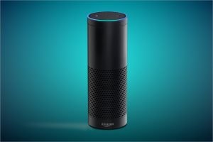 A dark cylinder that houses the gadget Amazon alexa